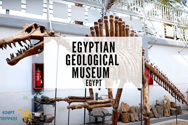 Geological Museum of Maadi