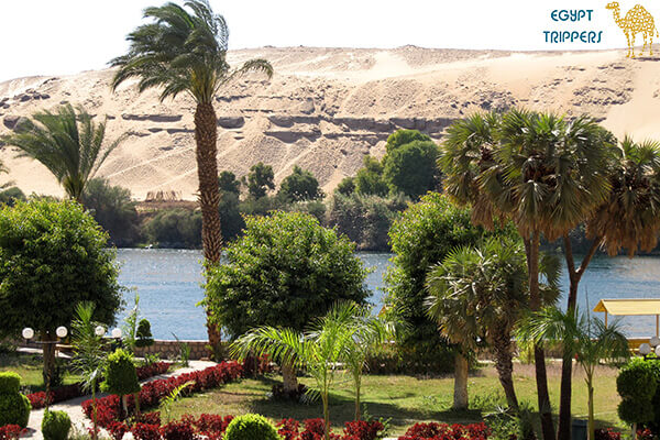 Isle of Plants in Aswan