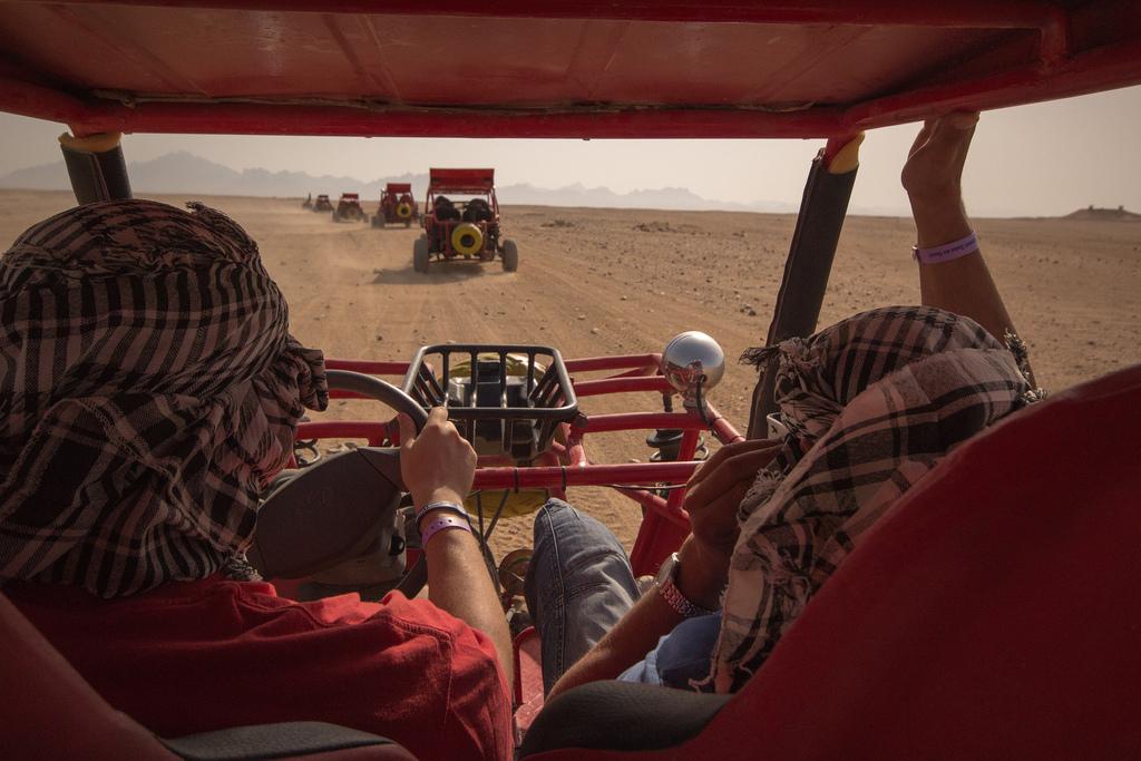 Day 06: Safari by Quad