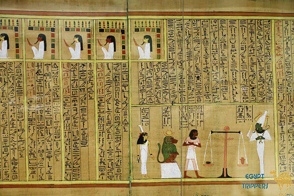 The Egyptian Museum of Papyrus