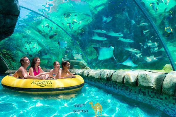 Water Park & Aquarium