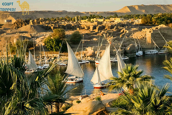 about Aswan Felucca Tours