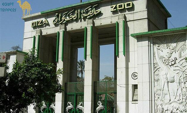 Zoo in Giza